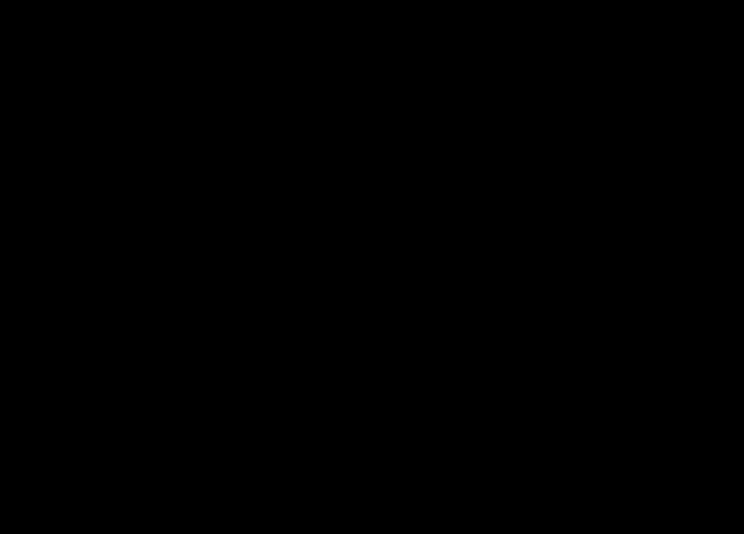 Логотип сайта по стяжке